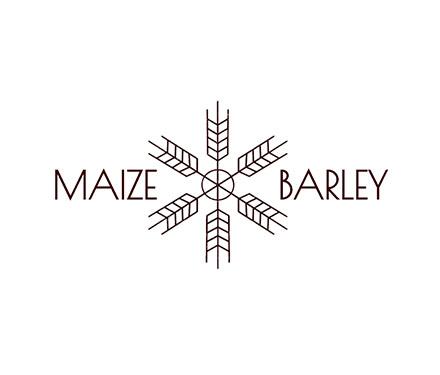 Maize & Barley logo