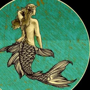 The Wild Mermaid