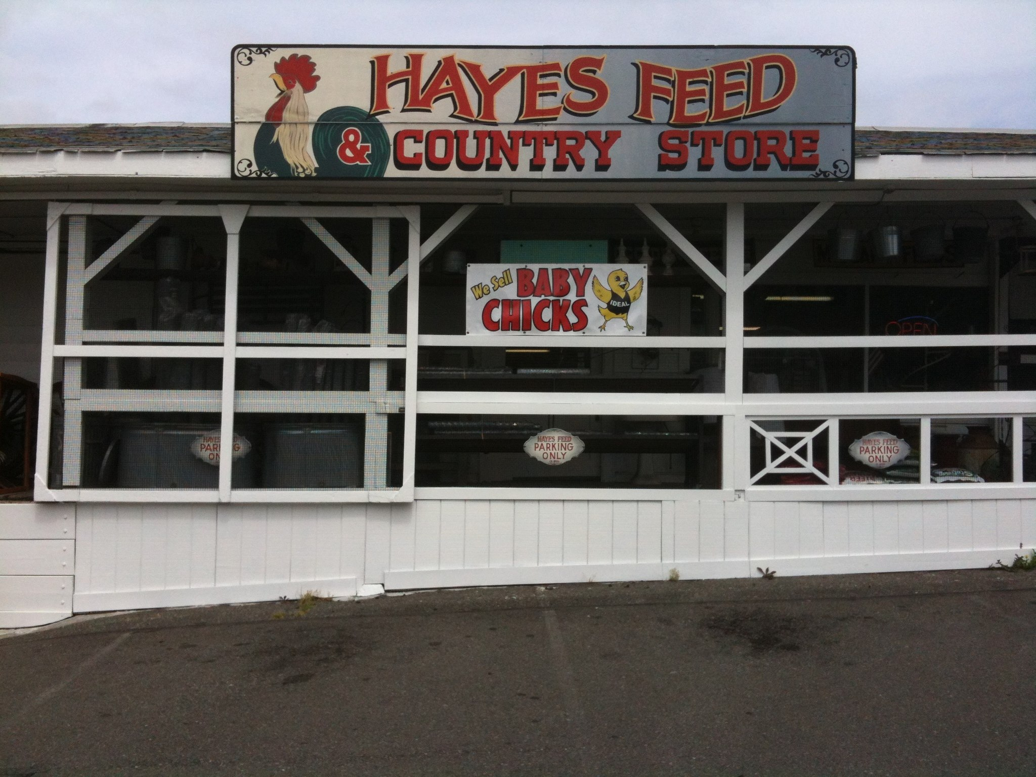 Hayes Feed & Country Store