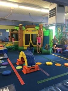 The Jungle Gym